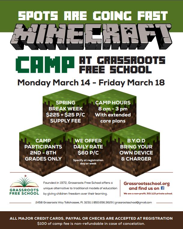 Minecraft Spring Break Camp